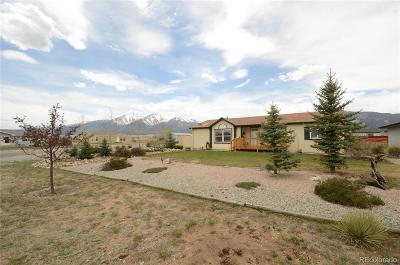 Buena Vista Single Family Home Under Contract: 180 Robert Drive