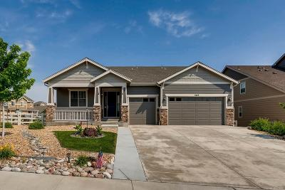Castle Rock Single Family Home Active: 3143 Cool Meadow Place