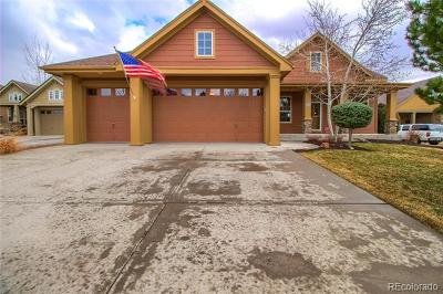 Castle Rock Single Family Home Active: 2016 Wild Star Way