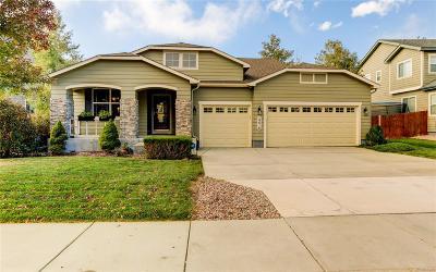 Colorado Springs Single Family Home Active: 14616 Blue Wings Way