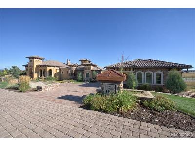 Flying Horse Single Family Home Active: 1814 Vine Cliff Heights