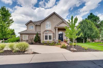 Highlands Ranch Single Family Home Active: 857 Fairchild Drive