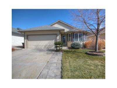 Briargate Single Family Home Under Contract: 8205 Telegraph Drive