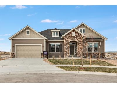 Aurora Single Family Home Active: 8665 South Zante Court