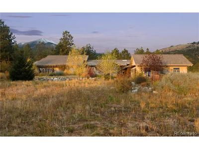 Buena Vista Single Family Home Active: 26599 County Road 339