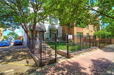 Denver Single Family Home Active: 1552-1554 North Pennsylvania Street