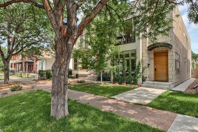 Denver Single Family Home Under Contract: 2520 Stout Street