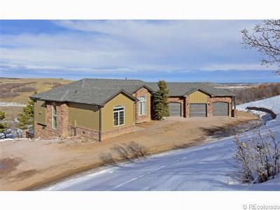 Castle Rock CO Single Family Home Sold: $825,000