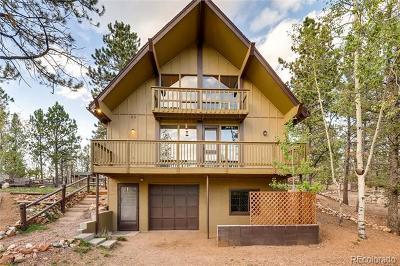 Woodland Park Single Family Home Active: 91 Alpine Road