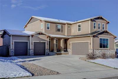 Single Family Home Active: 3981 Manorbrier Circle