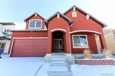 Denver Single Family Home Active: 4730 Uravan Street