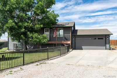 Single Family Home Active: 34115 Overland Loop