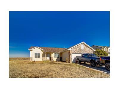 Bennett Single Family Home Active: 1195 View Ridge Road