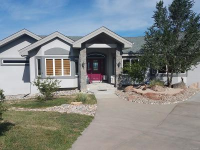 Castle Rock CO Single Family Home Active: $1,100,000