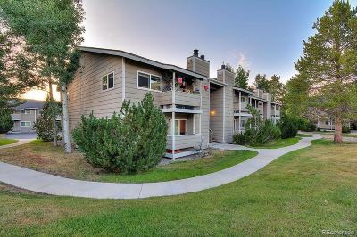 Steamboat Springs Condo/Townhouse Active: 1380 Athens Plaza #9