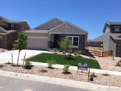 Arvada Single Family Home Active: 9351 Dunraven Street