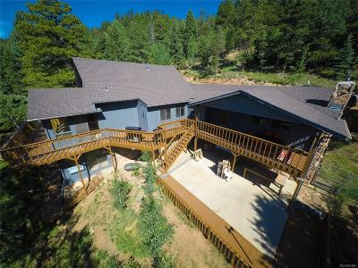 Evergreen Single Family Home Active: 1172 Snyder Mountain Road