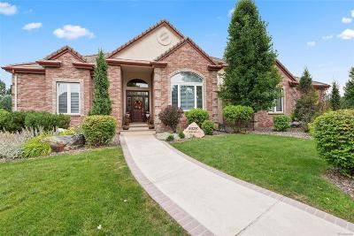 Denver Single Family Home Active: 5335 South Newland Court