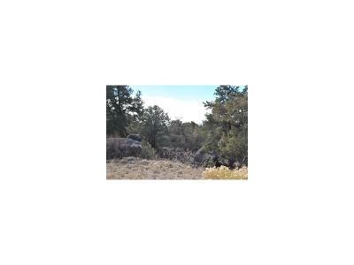 Crestone CO Residential Lots & Land Active: $24,700
