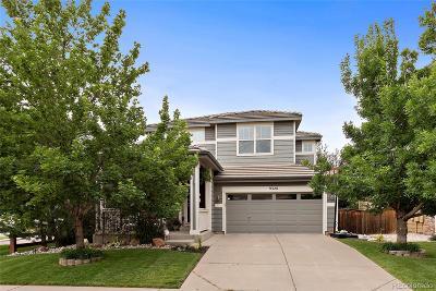 Parker Single Family Home Active: 9320 Branham Drive