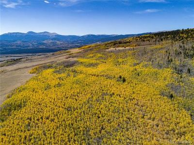 Fairplay CO Residential Lots & Land Active: $275,000