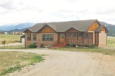 Buena Vista Single Family Home Active: 13950 Meadow Lane