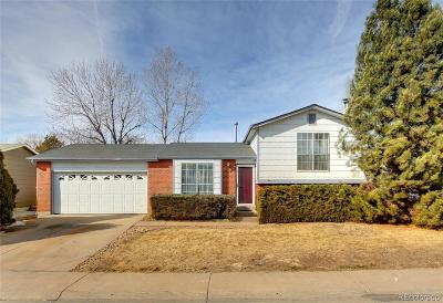Denver Single Family Home Under Contract: 4631 Fairplay Way