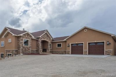 Buena Vista Single Family Home Active: 30795 Overlook Run