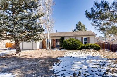 Parker Single Family Home Active: 11496 Hot Springs Drive