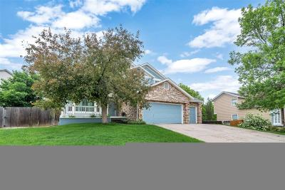 Arapahoe County Single Family Home Active: 5467 South Gibraltar Court