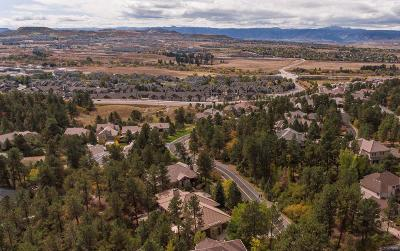 Castle Rock CO Single Family Home Active: $1,042,500