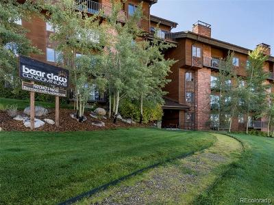 Steamboat Springs Condo/Townhouse Active: 2420 Ski Trail Lane #514
