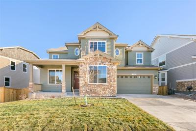 Castle Rock Single Family Home Active: 1386 Sidewinder Circle