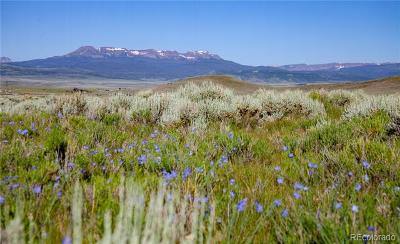 Oak Creek, Phippsburg, Yampa, Toponas Residential Lots & Land Active: 240.82 Acres State Highway 134