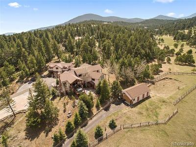 Evergreen Single Family Home Active: 32382 Meadow Mountain Road