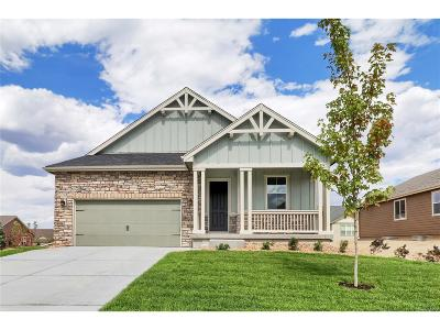 Elbert County Single Family Home Active: 5779 Desert Inn Loop