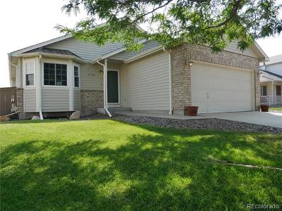 Castle Rock Single Family Home Active: 5135 Eckert Circle
