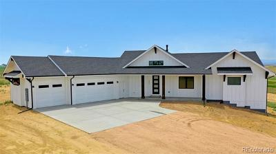 Greeley Single Family Home Active: 245 83rd Avenue