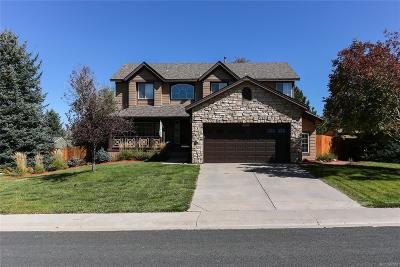 Douglas County Single Family Home Active: 21521 Unbridled Avenue
