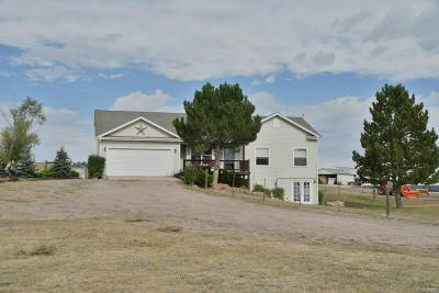Elbert County Single Family Home Under Contract: 27241 Plainview Drive