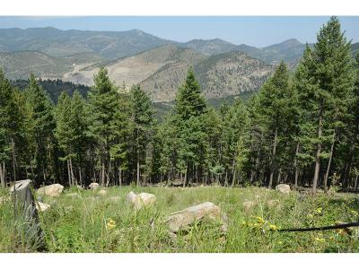 Clear Creek County Residential Lots & Land Under Contract: 93 Sawmill Creek Road
