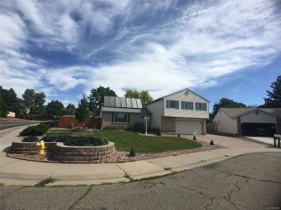Arvada Single Family Home Active: 8230 Hoyt Way