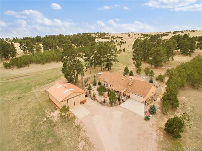 Elbert County Single Family Home Active: 3550 County Road 132