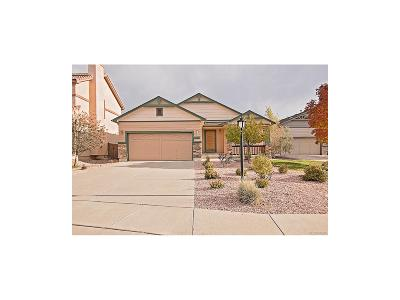 Pine Creek Single Family Home Under Contract: 4127 Purple Plum Way