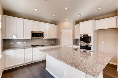 Castle Rock Single Family Home Under Contract: 971 McMurdo Circle