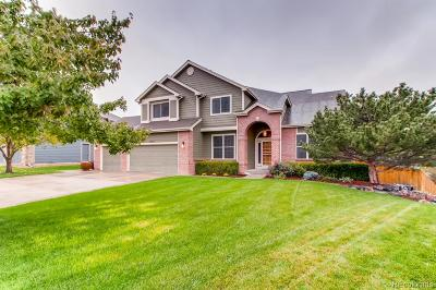 Arvada Single Family Home Under Contract: 12263 West 83rd Lane
