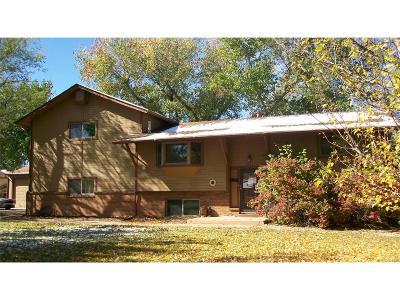 Longmont Single Family Home Active: 9751 Sierra Vista Road