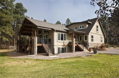 Monument Single Family Home Active: 18355 Arrowwood Drive