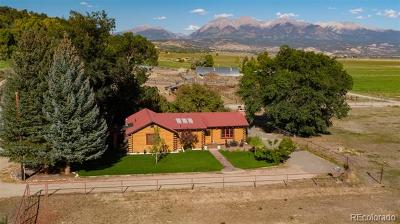 Salida Single Family Home Active: 8220 County Road 160