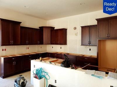 Broomfield Single Family Home Under Contract: 15987 La Plata Peak Place